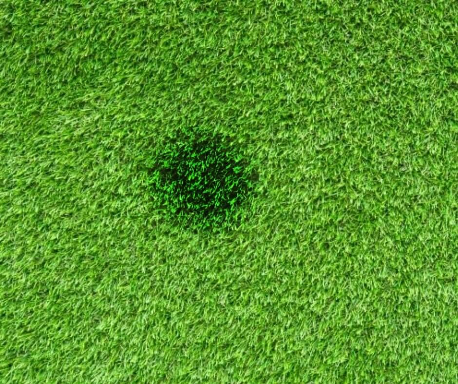 artificial grass cigarette burn spots