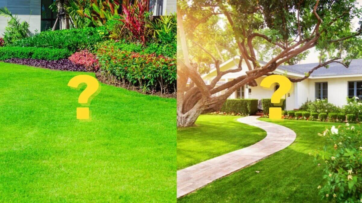 yard vs lawn